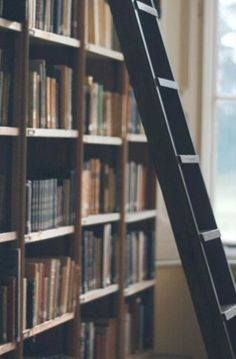 本をたくさん読む 【SPIを勉強中】