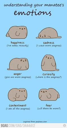 Emotions of a manatee - posting to dogs since my lab has been called a Manatee by his vet's office since he was a puppy!