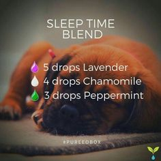 Sleep Time Blend