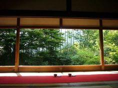 京都の庭園でまったり♪お抹茶がいただけるお寺7選   icotto[イコット]