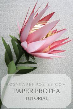 Protea Blog Title (1)