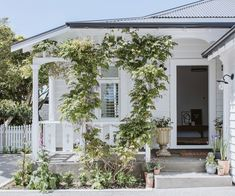 A stunning Palmerston North villa transformed by two seasoned renovators