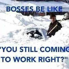 bosses be like funny memes work meme lol funny quote funny quotes humor bosses Chef Humor, Boss Humor, Nurse Humor, Teacher Humor, Work Memes, Work Quotes, Work Funnies, Work Humour, Friday Funnies
