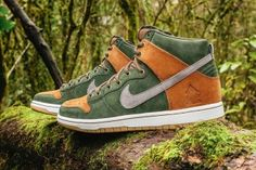 Nike SB & Homegrown Look to Nature for Dunk High Collaboration