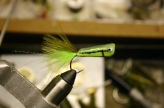 Chartreuse baby bass crease fly SBS | The bait used for Blake's Louisiana state record spotted bass | DIY fly tying instructions by Blake at MountainstoMarsh.com