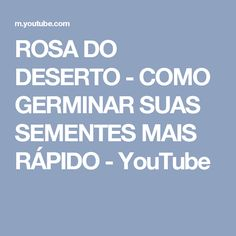 ROSA DO DESERTO - COMO GERMINAR SUAS SEMENTES MAIS RÁPIDO - YouTube
