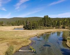 Don't miss out on this property for sale in Fort Klamath, OR. ranch with over a mile of crystal clear waters of the Wood River running the length of the property. Wood River, Ranches For Sale, Crystal Clear Water, Land For Sale, Acre, Property For Sale, Oregon, Golf Courses, Running