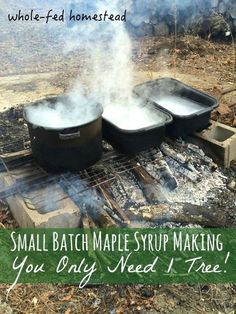 Small Batch Maple Syrup-Making: You Only Need 1 Tree Maple Boiling: Small Batch Maple Syrup-Making: You Only Need 1 Tree! How to make maple syrup at home without sugar maples. Whole-Fed Homestead Homestead Farm, Homestead Survival, Survival Skills, Survival Tips, Wilderness Survival, Survival Food, Homestead Living, Survival Shelter, Outdoor Survival