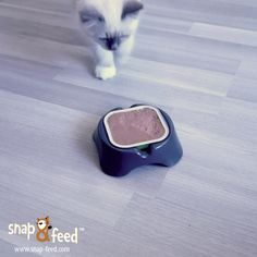 If you are not going to finish your meal... I will! #Cat #Cats #Kitten #Kitty #Babycat #Catfood #Katzenfutter #ProductDesign #Design