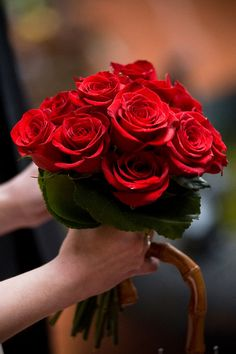 Red roses for Valentine's Day. #roses #red
