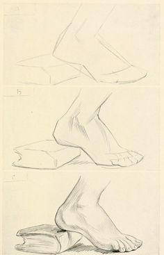 """From the public domain book, """"Drawing for Beginners,""""  Download in epub, pdf or kindle format here: https://archive.org/details/drawingforbeginn00furn"""