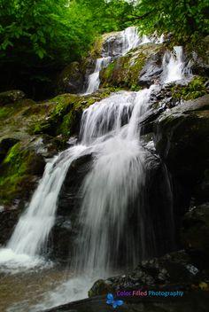 Dark Hollow Falls, Shanandoah National Park.  Skyline drive.  Virginia