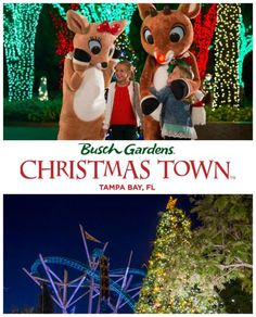 The Tampa Bay area annual tradition of Busch Gardens Christmas Town will be back again this year. You will find all sorts of festive celebrations!