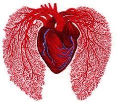 andrea dezso heart embroidery
