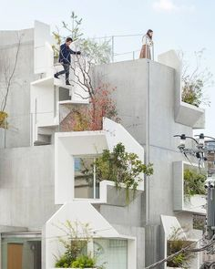 Tree-ness House Tokyo Japan 2017 / Project by Akihisa Hirata Architecture Office. Tree-ness House Tokyo Japon 2017 / Projet d& Hirata Architecture Office / Ph. Concrete Architecture, Japanese Architecture, Architecture Office, Amazing Architecture, Concrete Jungle, House Tokyo, Architecture Presentation Board, Architectural Section, Tokyo Japan