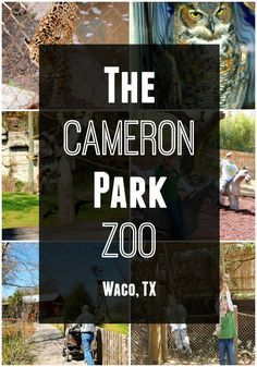 A look at the Cameron Park Zoo in Waco, Texas.