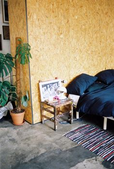 into the: rug by the bed, potted plant in the bedroom, chair as night table.