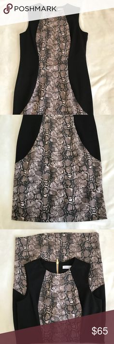 Snake skin dress Calvin Klein snake skin dress. Good condition but a big dusty. Overall very cute and a great work outfit for all seasons. Calvin Klein Dresses
