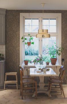vitmålat under fönster