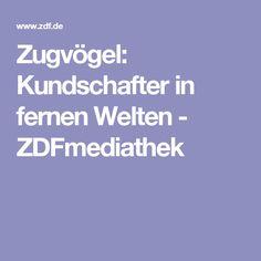 Zugvögel: Kundschafter in fernen Welten - ZDFmediathek