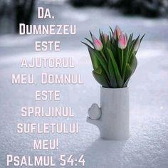 God, Beautiful, Bible, Fotografia, Dios, Allah, The Lord