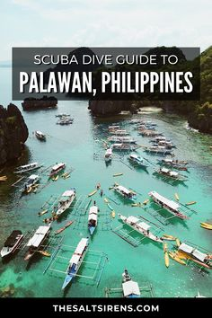 The Ultimate Scuba Dive Guide to Palawan, Philippines - The Salt Sirens Resorts In Philippines, Regions Of The Philippines, Philippines Palawan, Philippines Travel Guide, Philippines Food, Bohol, Cebu, Manila, Places To Travel