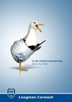 Loogman Carwash: Birds in Nappies   http://www.gutewerbung.net/loogman-carwash-birds-nappies/ #Advertising