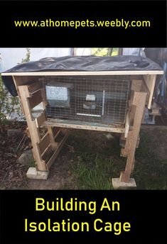 How to build a cage to protect rabbits coming into your herd. House Rabbit, Rabbits, Cage, Pets, Building, Outdoor Decor, Home Decor, Buildings, Rabbit
