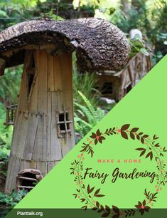 Fairy Gardens, Produced by Tagawa Gardens, a partner in PlantTalk Colorado. Fairy Gardening, Gardening Tips, Create A Fairy, Colorado State University, Beautiful Homes, Outdoor Decor, Plants, How To Make, House Of Beauty
