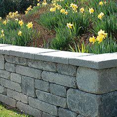 Spring Modo Mauer Vorgarten