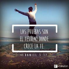 Cuando la vida nos ponga pruebas, demostremos por nuestras decisiones y acciones que amamos a Dios y los demás. «Si nos arrojan al horno ardiente, el Dios a quien servimos es capaz de salvarnos. Él nos rescatará de su poder, su Majestad». —Daniel 3:17