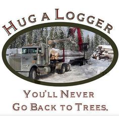 5a9d13fe 74 Best My Logger images | Journals, Logs, Magazines