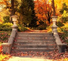 Walk in the park - Falls by Martin Dugas on 500px