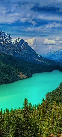 Peyto Lake, Banff National Park, Canada Yes it is really that blue! Directions & Travel Tips Places Around The World, Oh The Places You'll Go, Places To Travel, Places To Visit, Travel Destinations, Parc National De Banff, Banff National Parks, Jasper National Park, Photos Voyages