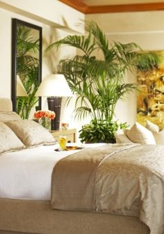 Wonderful 39 Bright Tropical Bedroom Designs : 39 Bright Tropical Bedroom Designs With White Brown Green Bed Pillow Blanket Chair Nightstand Lamp Mirror Wallpaper And Sofa