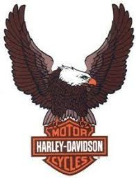 Image result for pe-200 snoopy embroidery machine patterns harley davidson