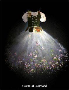 Flower of Scotland - Highland ballet.
