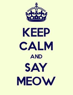 Keep Calm and Say Meow