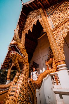 Top things to do in Chiang Mai How to Find Ethical Elephant Sanctuaries in Chiang Mai How to Find Ethical Elephant Sanct. Thailand Destinations, Thailand Travel Guide, Travel Destinations, Thailand Shopping, Visit Thailand, Bangkok Itinerary, Scuba Diving Thailand, Cheap Things To Do, 5 Things