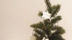 Stylisches Stirnband selber nähen - DIY Nähprojekt für Anfänger Diy Weihnachten, Plants, Diy Sewing Projects, Modelling Clay, Diy Xmas Gifts, Advent Season, Xmas Trees, Homemade, Plant