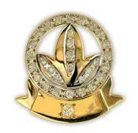 Herbalife diamond presidents team pin! :) I will achieve one day!