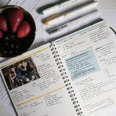 @yinsume_studyblr Dotted Bullet Journal, Bullet Journal Inspo, Bullet Journals, Studyblr, Planner Organization, Smash Book, Journalling, Bujo, Planners