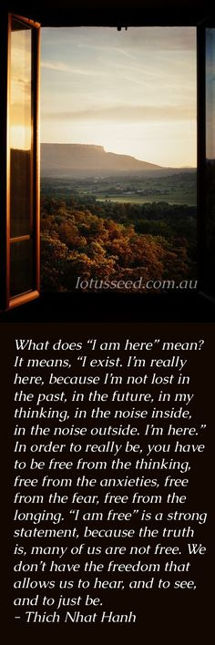 Thich Nhat Hanh, Buddhist Zen quotes -Visit lotusseed.com.au for though provoking quotes such as this
