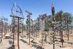 Bottle Tree Ranch | The Dainty Squid