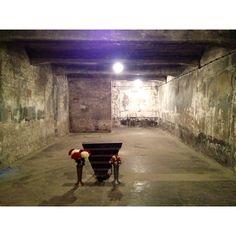 Inside the last standing Auschwitz gas chamber.