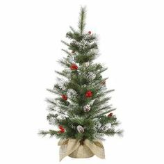 Shop online for this gorgeous 36 Inch Frosted Pine Berry Trees Tabletop Tree Artificial Christmas Tree with 50 Clear miniature lights and 102 PE/PVC branch tips. This tree features a 1 Year Seasonal warranty for your peace of mind! Christmas Tree Clear Lights, Tabletop Christmas Tree, Christmas Trees, Thing 1, Small Trees, Pine Cones, A Table, Frost, Berries