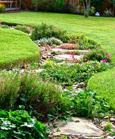 Reducing your lawn with beautiful alternatives. This could be a path or a dry stream bed