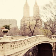 Central Park, New York City. Bow Bridge.