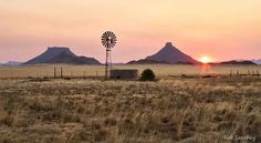 *🇿🇦 Warm Winter Glow in the Karoo (South Africa) by Rob Southey Landscape Art, Landscape Paintings, Big Sky Country, Country Living, Winter Sunset, Le Moulin, Old Farm Houses, Africa Travel, Beach Art