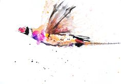 Contemporary limited edition print of original watercolour PHEASANT Printed using epson Chroma pigments on archival 315 gsm paper. Butterfly Wall Art, Bird Art, Black Faced Sheep, Sea Life Art, Portrait Wall, Wildlife Art, Limited Edition Prints, State Art, Original Paintings